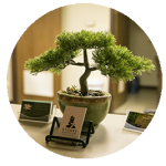 Image of a bonsai tree, with a set of 7 Stones Acupuncture and Wellness Center business cards.